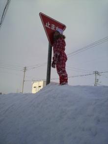 あやのひとり言★北海道より-2011013014410000.jpg
