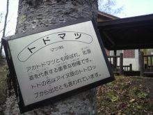 あやのひとり言★北海道より